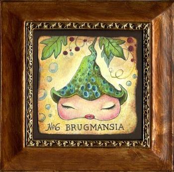 Brugmansiaaurea